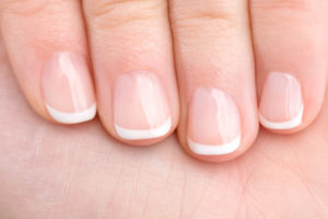 47714053 - naturally french manicured fingernails healthy hand
